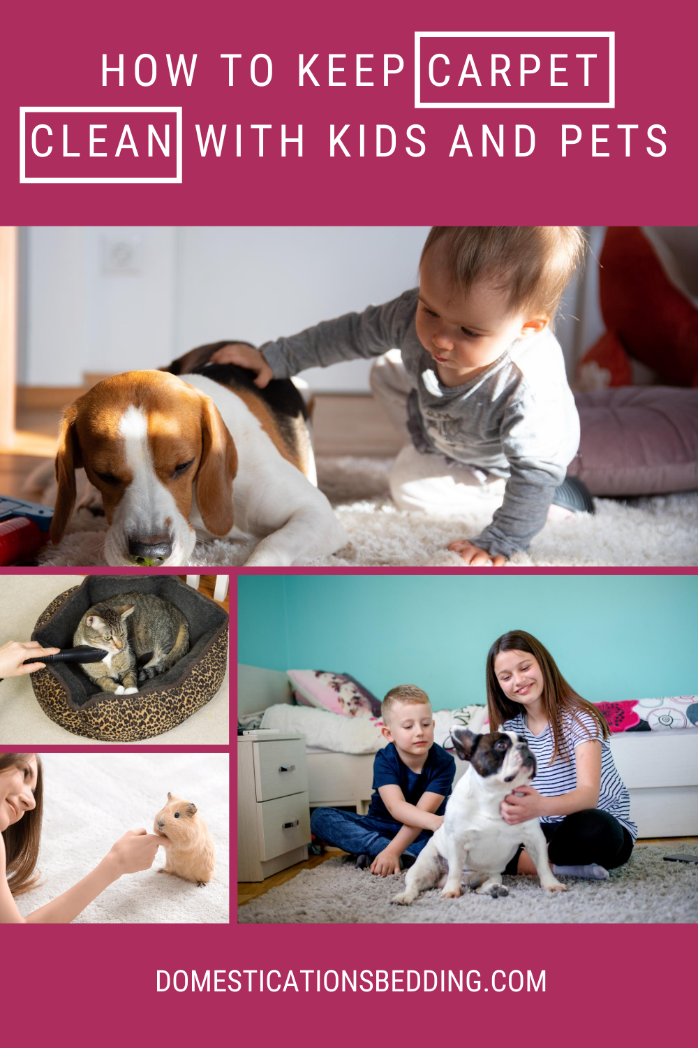 How to Keep Carpet Clean Even with Kids and Pets