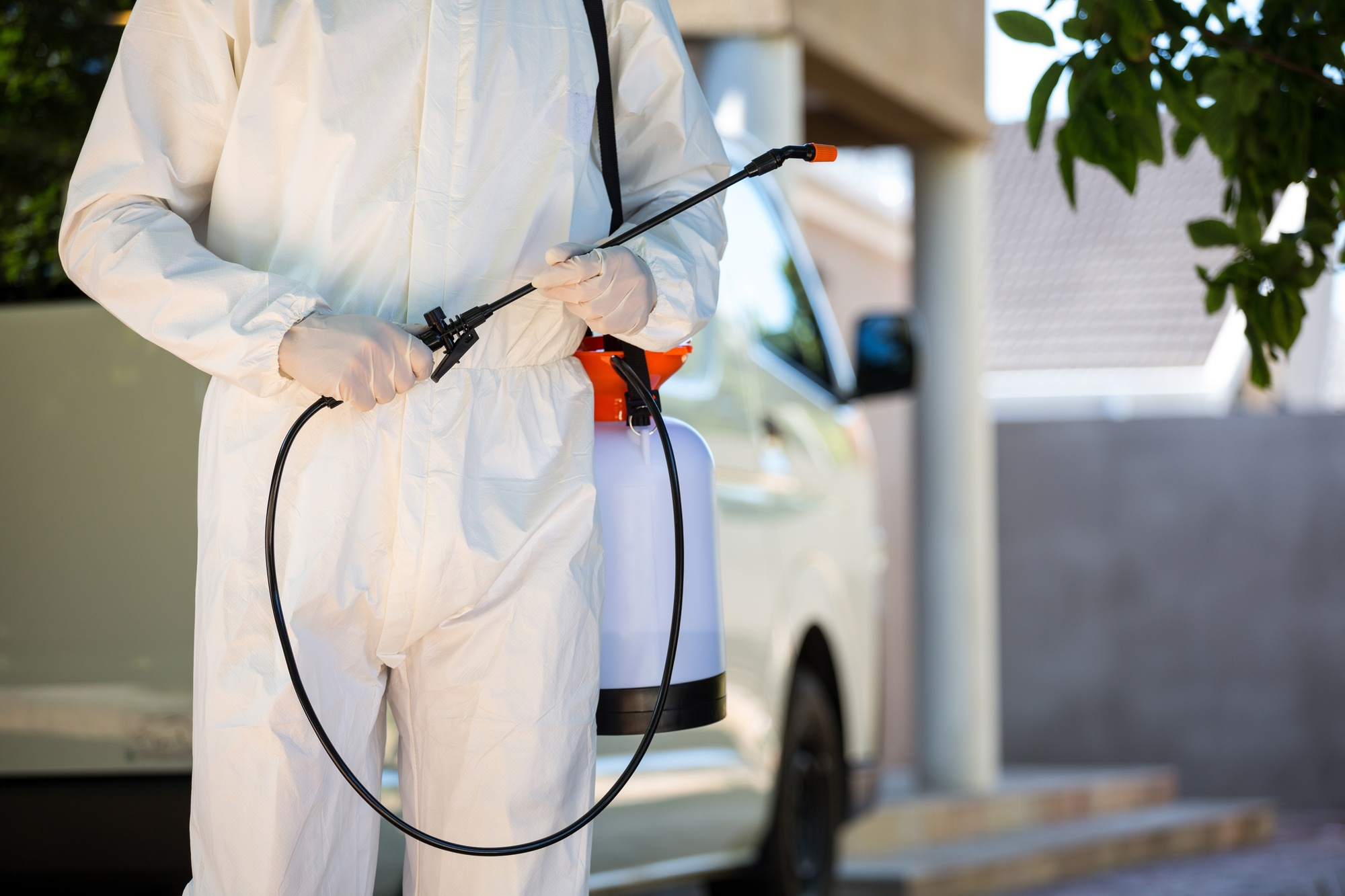 This Is How to Hire a Professional Exterminator