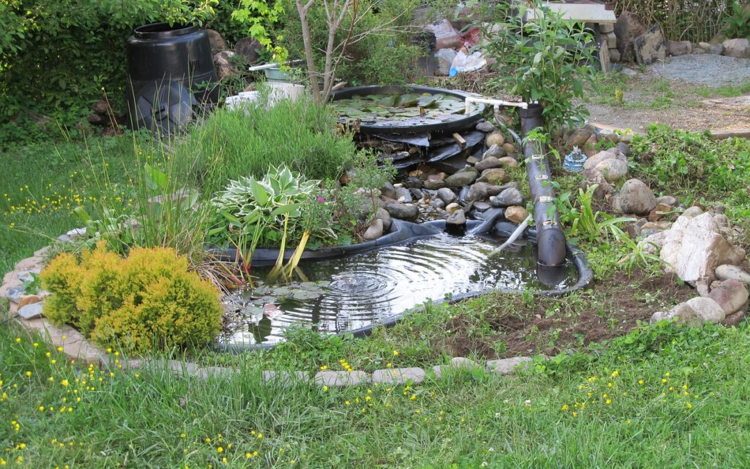 How to Pick an Air Diffuser for Your Pond