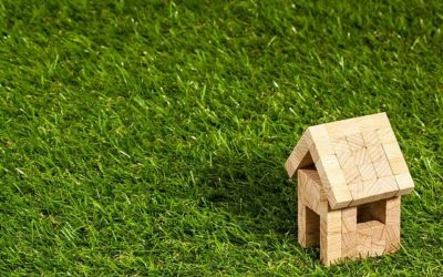 Tips On Planting Grass For Your Garden