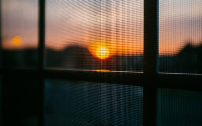 Is It a Good Idea to Fit Fly Screens to Your Home?