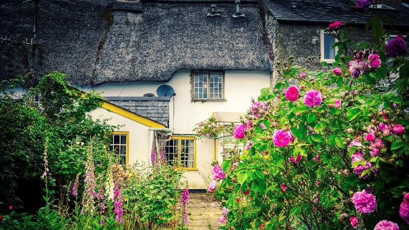 Repairing Timber Windows in Listed Buildings