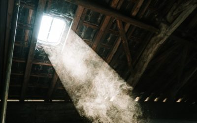 Where Does Dust Come From in an Empty House?