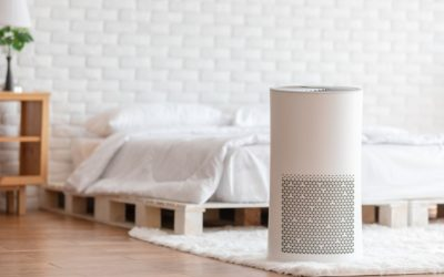 Do Air Purifiers Get Rid of Odors?